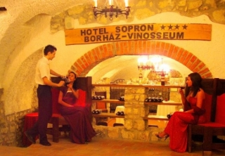 http://hotellooking.com/?page=hotel&id=hotel_sopron